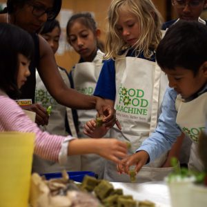 Students seeding plants in a Good Food Machine classroom