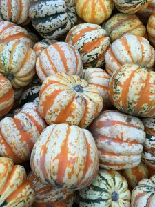 Overhead photograph of pumpkins